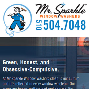 Mr. Sparkle Window Washers