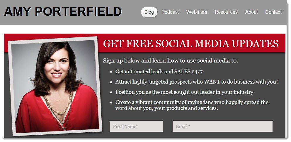 Amy Porterfield Blog Online courses
