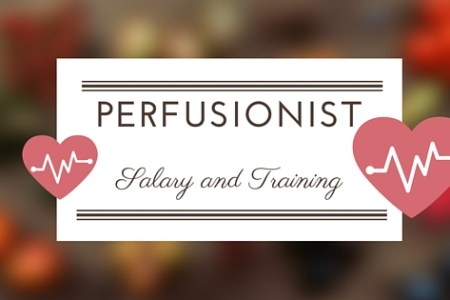 Perfusionist Salary