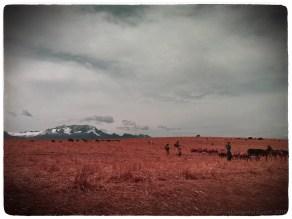 sacred-valley-farms_4999916185_o
