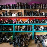 An Antarctic Thrift Shop: McMurdo's Skua