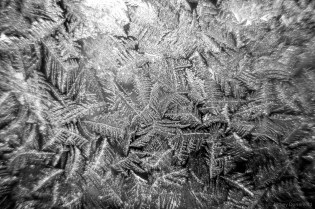 Extreme cold for long periods of time causes frost to grow everywhere. These large ice crystals had grown on the window separating the drill arch from the core handling arch.