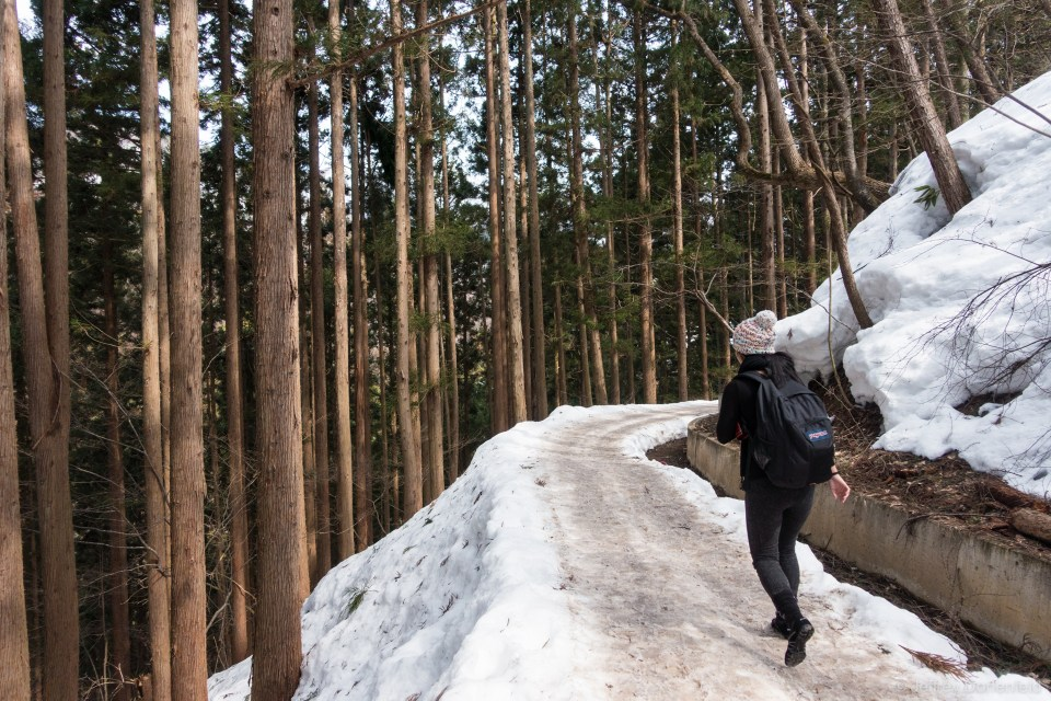 Starting the hike up the snowy path leading to the Snow Monkey Onsen.