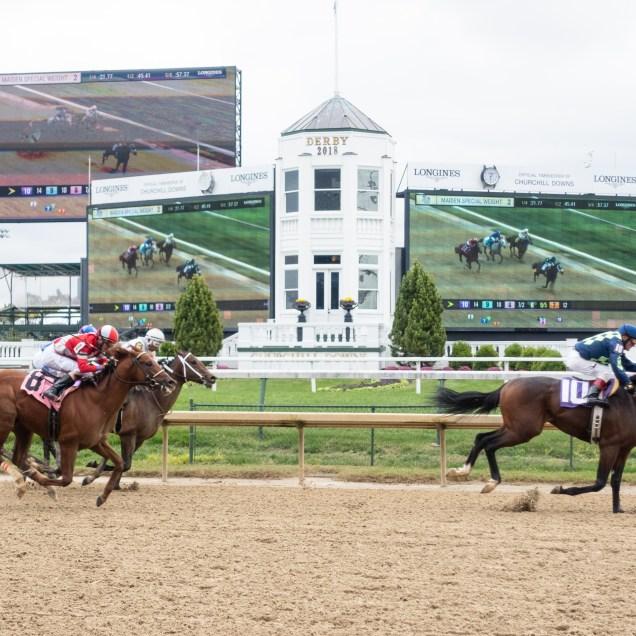 Horses and jockeys fly by
