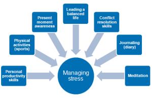 stress management plan components