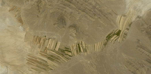 UAE-fieldInTheMiddleOfNowhere-web