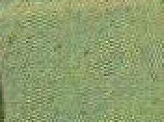 WeirdCompressionFromScan_01