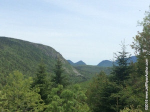 Photo of Zealand Notch in New Hampshire