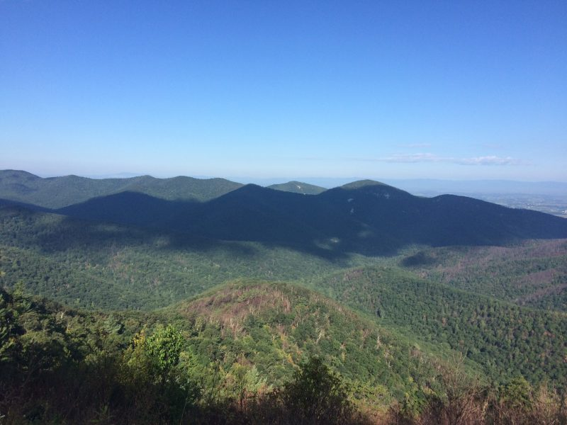 A view from Skyline Drive