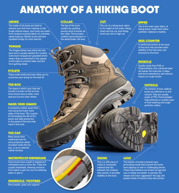 Graphic of the anatomy of a hiking boot