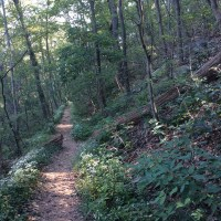 Photo of Appalachian Trail in Duncannon, PA. @2018 www.JeffRyanAuthor.com