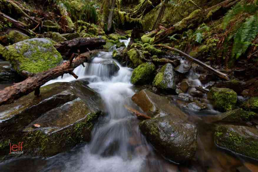 Small waterfall - Sorenson Creek on Eagle Creek Trail photographed by Jeff Wendorff
