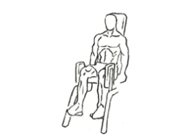 Thigh Abductor