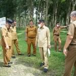 Bupati Asahan Tinjau Hutan Kota Taufan Gama Simatupang