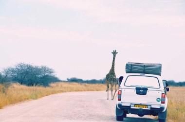 4x4 en Namibie