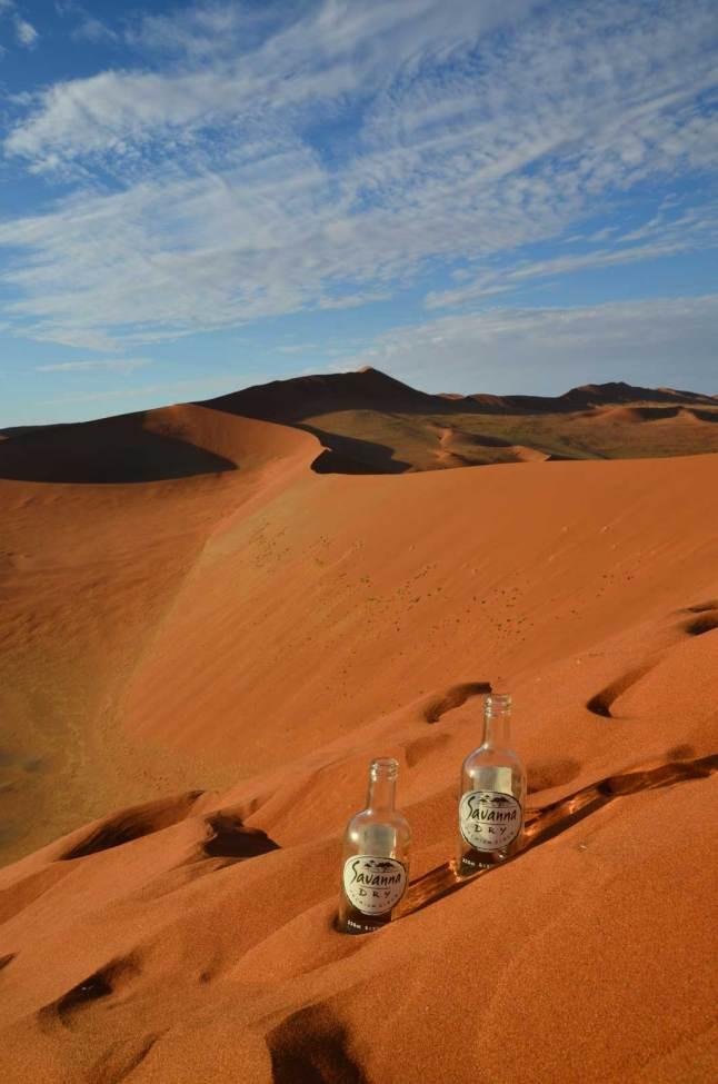 Savanna Dry dans les dunes