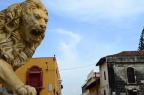 Lions de la cathédrale