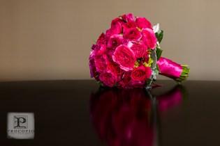 042013, Weaver Wedding, Procopio Photography-005