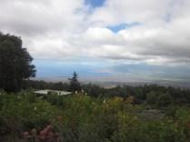 Nice view