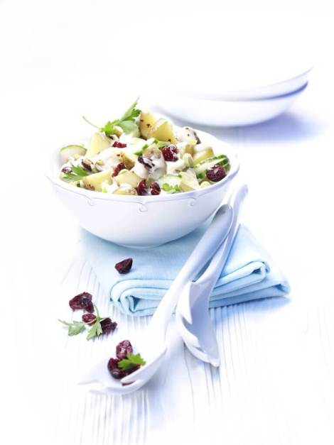 Cranberry Potato Cucumber Salad
