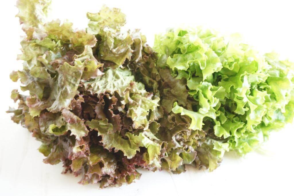 CSA Bibb Lettuce