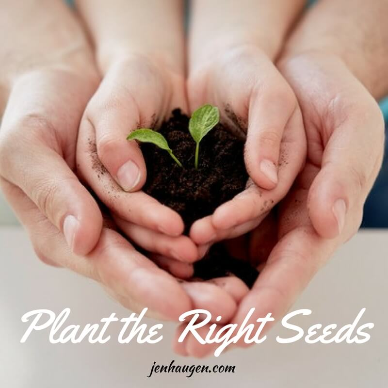 Planting the right seeds