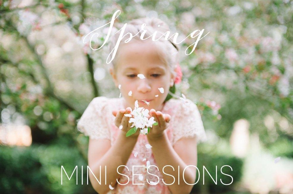 mini-sessions