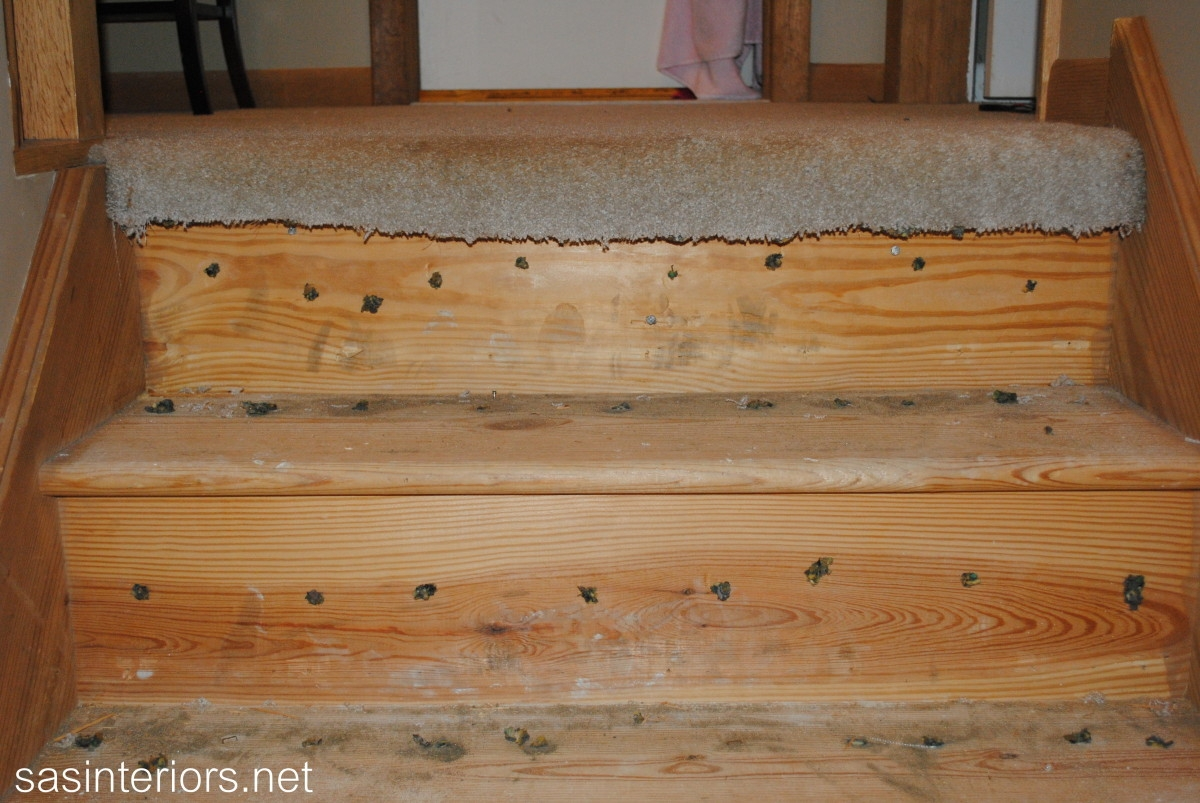 Staircase Makeover A New Diy Venture Begins Jenna Burger Design Llc | Carpeted Stairs To Wood Floor Transition | Laminate Flooring | Staircase | Hall Carpet Transition | Metal Edge Transition | Wooden