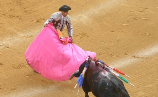 Sail away with a matador...yes, please.