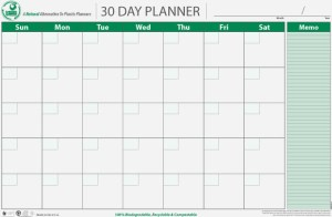 PlanetSafe Planner 30-day planner