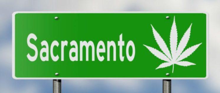 Law Offices of Jennifer McGrath - California Cannabis Law