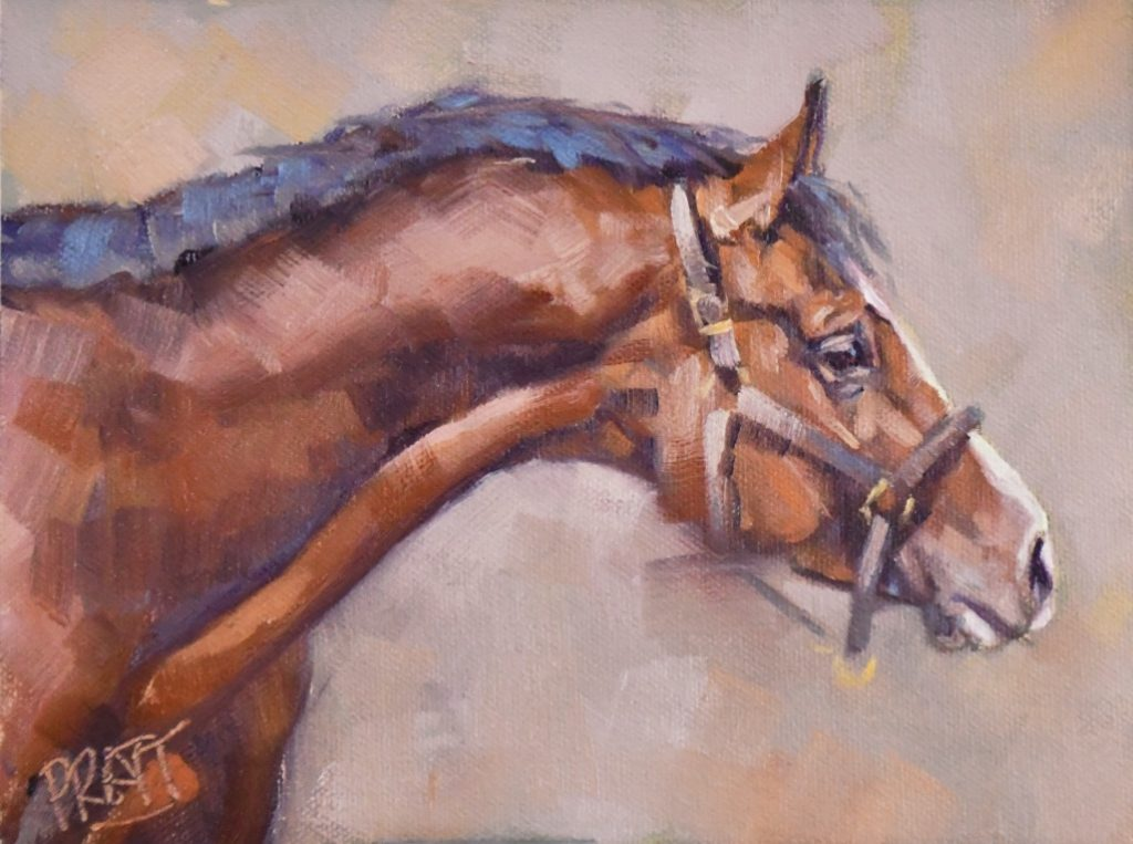 Stallion, Jennifer Pratt, Centre Pointe, Daily Paintworks