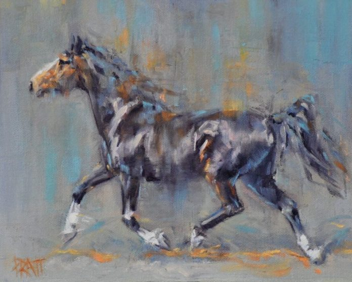 Freedom, Jennifer Pratt, Dutch Warmblood