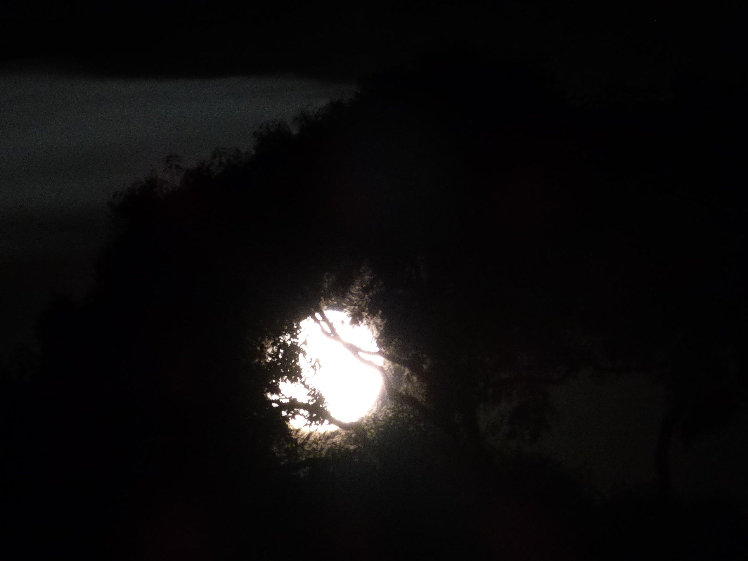 Moon Rise Illumination 93%