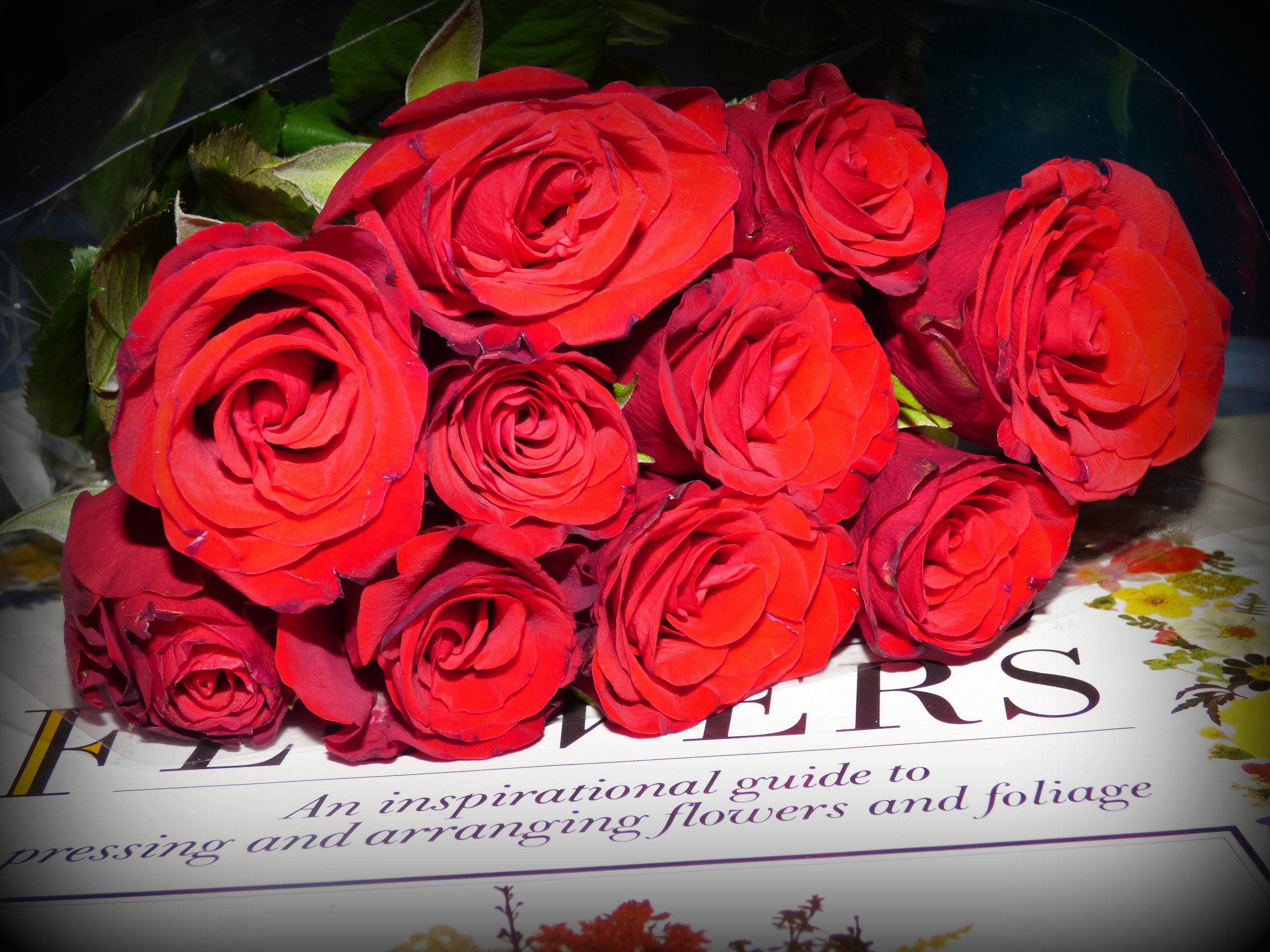 Bunch of Fresh Roses to Dried Flower Arrangement