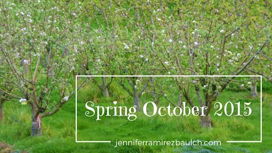 spring oct 2015 title