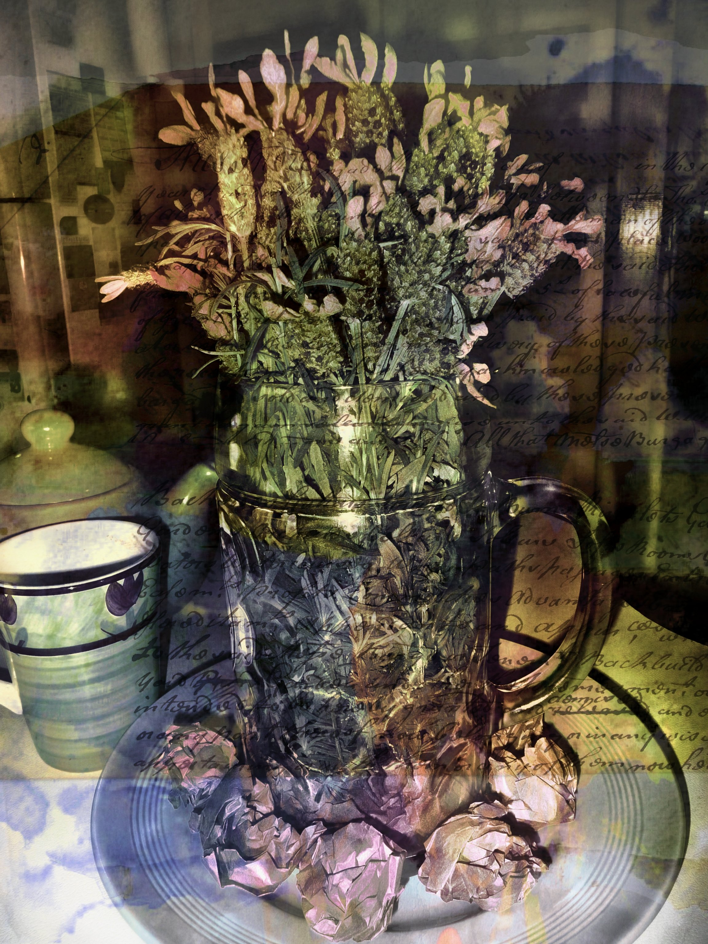 lavender graphy