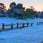 Ballarat Frosty Paddock Winter-Spring August 20