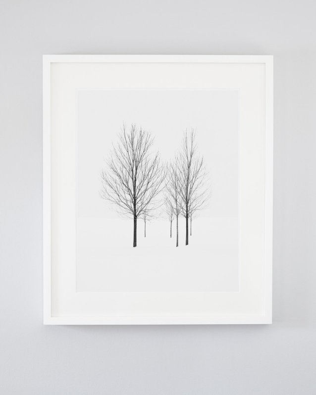 Tree Art for Walls - Elviage Pearl - Winter Landscape Photography