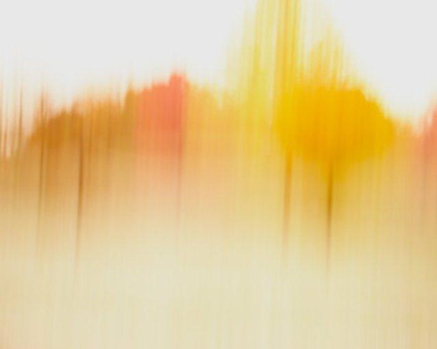 Abstract Tree Art - Charlotte