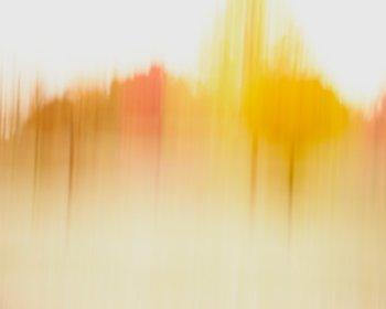 Abstract Tree Art - Charlotte - Modern Minimalist Autumn Decor