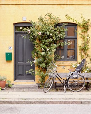 Bicycle Built for Two - Copenhagen Bicycle Picture