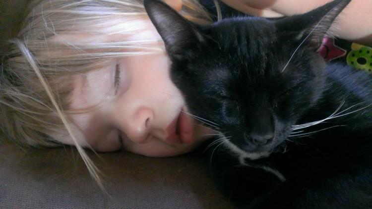 cat sleeping with kids