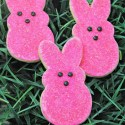 Peeps Sugar Cookies Recipe for Easter
