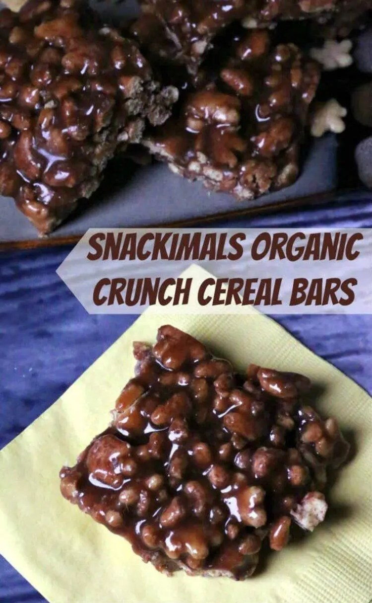 Snackimals Easy No Bake Organic Crunch Cereal Bars