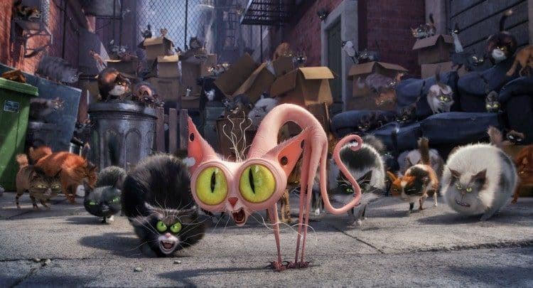 The Secret Life of Pets, What's Your Pets Secret Life Like?