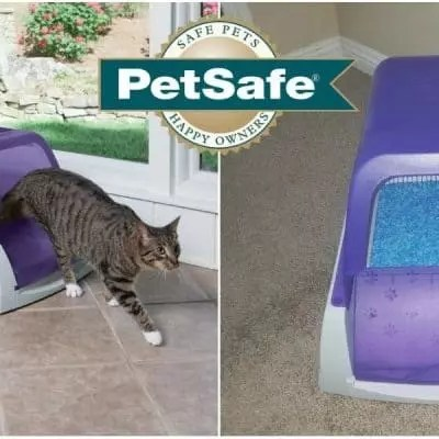 Keeping Your Cat Healthy & Litter Box Fresh With PetSafe!