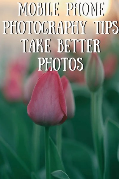 Mobile Phone Photography Tips – Take Better Photos