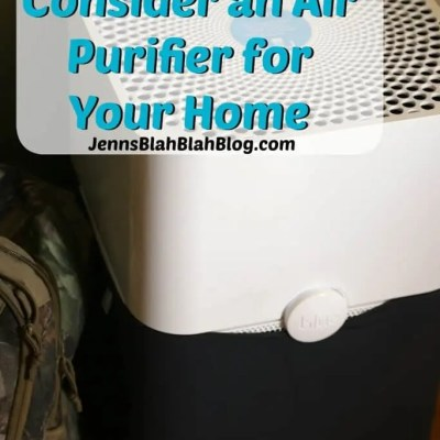 Reasons To Consider an Air Purifier for Your Home