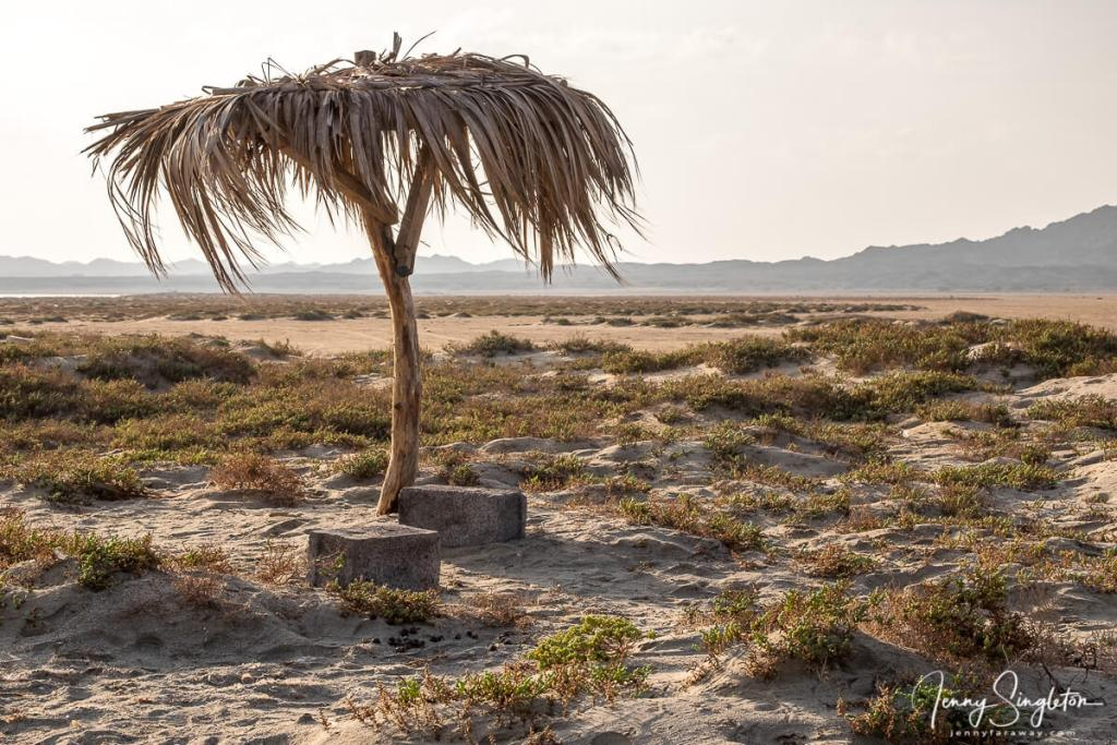 A thatched roof shelter overlooks sand flats on Masirah Island, Oman.